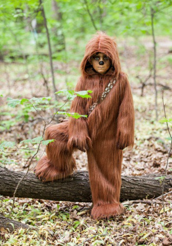 Chewbacca costume available at HalloweenCostumes.com