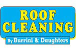 BURRINI'S ROOF CLEANING logo