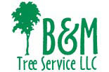 B & M TREE SERVICE LLC logo