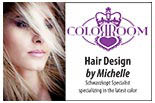 The Color Room - Hair Design By Michelle logo