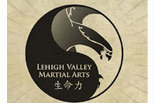 LEHIGH VALLEY MARTIAL ARTS logo