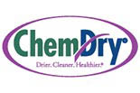 REMINGTON CHEM DRY logo