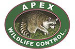 APEX WILDLIFE logo
