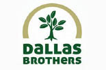 DALLAS BROTHERS LANDSCAPING logo