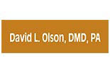 DR DAVID L. OLSON logo