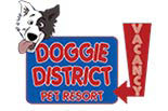 DOGGIE DISTRICT logo