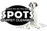 SPOTS CARPET CLEANING logo