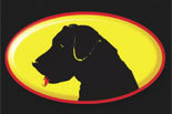 BLACK DAWG SEALCOAT OF FREDERICKSBURG logo