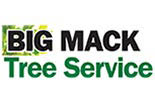 BIG MAC TREE SERVICE STATEN ISLAND