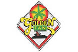 GOLDEN TAN logo