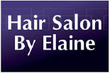 HAIR SALON BY ELAINE logo