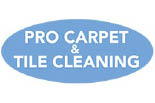 Pro Carpet And Tile logo