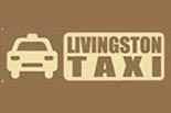 LIVINGSTON TAXI logo