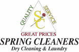 SPRING CLEANERS logo