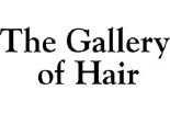 THE GALLERY OF HAIR DESIGN