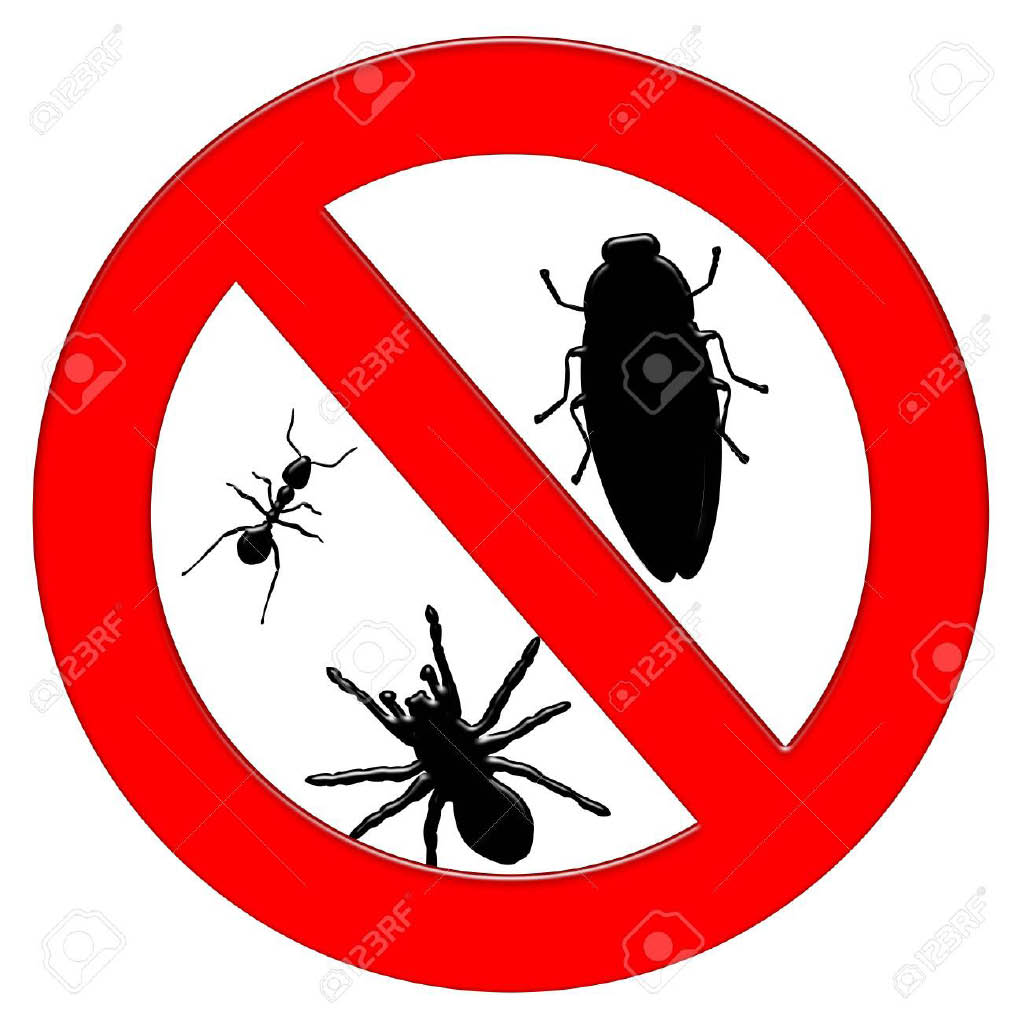 Pest Are GONE using our services