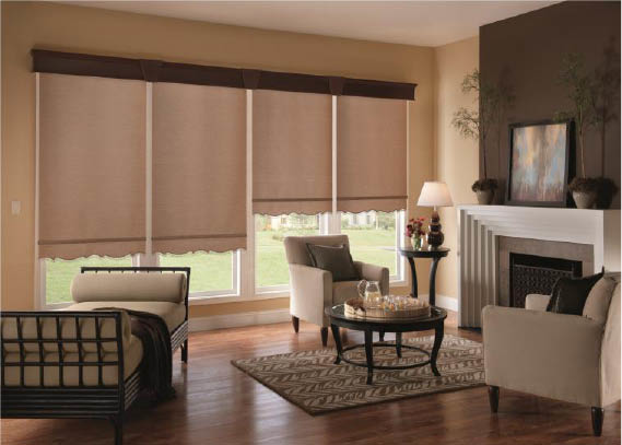 Liven your living room with blinds near Glendale