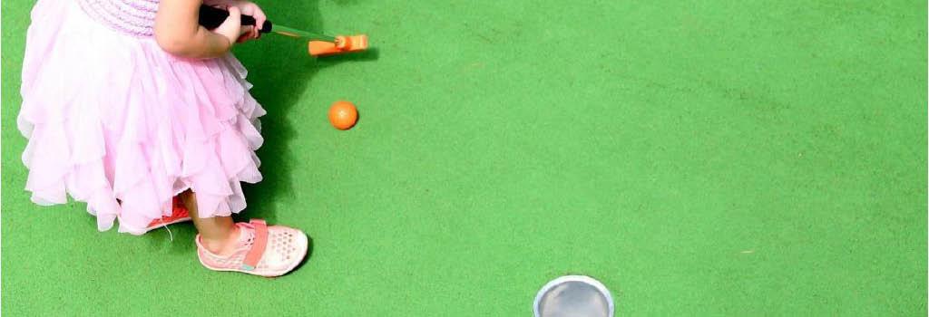 par 2 miniature golf putt putt go carts bumper cars toledo ohio alexis road