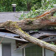 uncle skeeter's roofing, siding and gutters, storm damage to roof, fallen tree