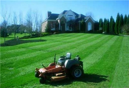 perfect yard; mowing masters of northern virginia