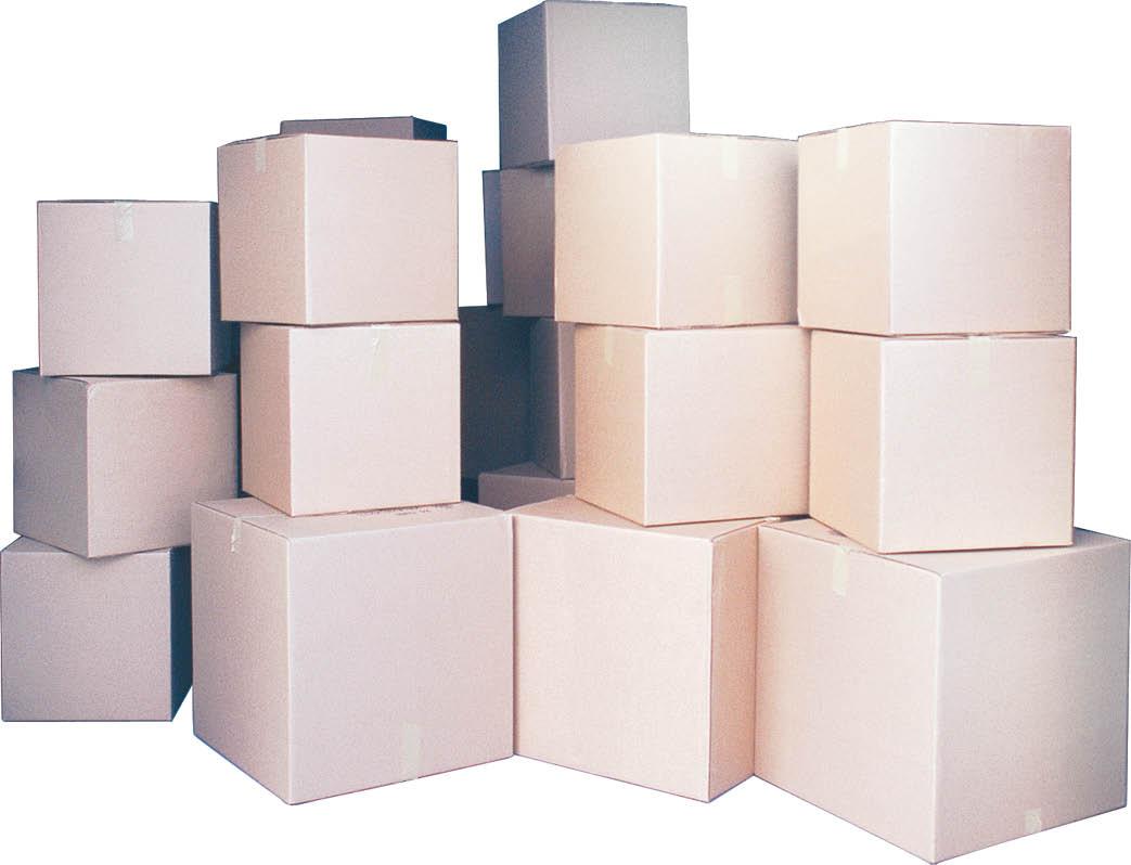 Moving boxes near Grayton Beach