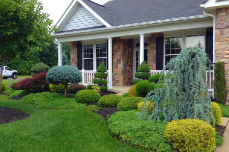 residential landscaping victors landscaping services llc plainfield, nj