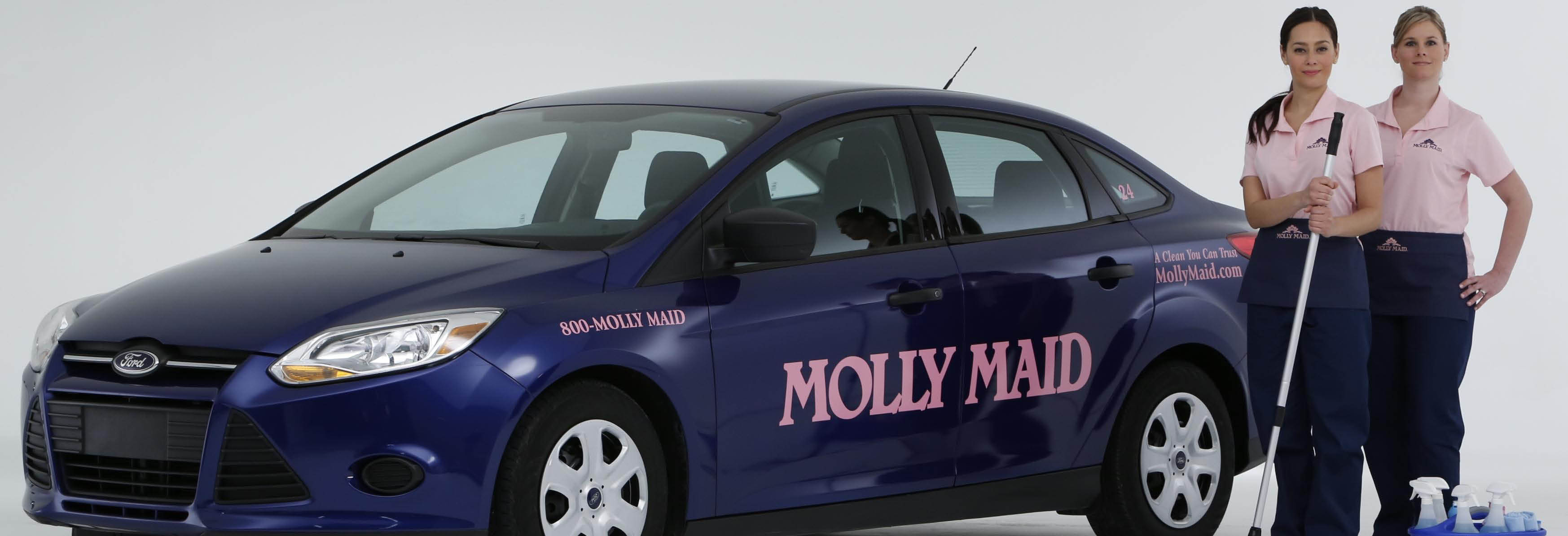 molly maid professional cleaning