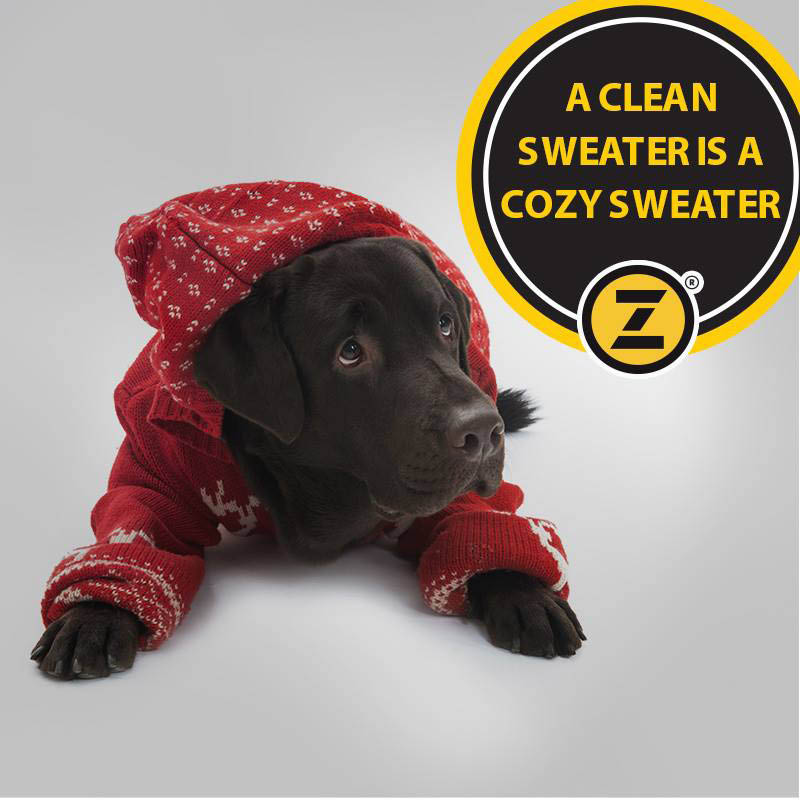 Zips, York, Dry Cleaning, Laundry, Stain Cleaning, Comforters, Clothes, Professional,
