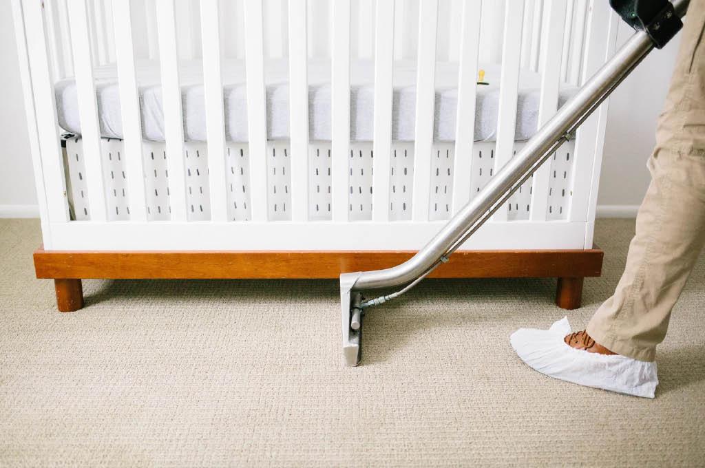 Zerorez Northern Colorado Carpet Cleaning
