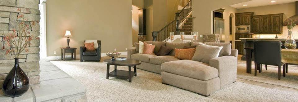 651 Carpets of Minnesota