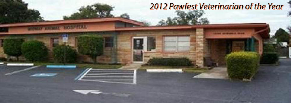 MIDWAY ANIMAL HOSPITAL FRONT OF OFFICE PHOTO