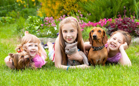 Kent veterinarians - veterinarians in Kent, WA - A Pet Clinic of Kent - kids with their pets