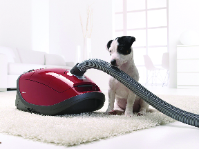 AAA Vacuum Miele canister vacuum