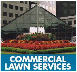 Best commercial lawn service discounts in Houston