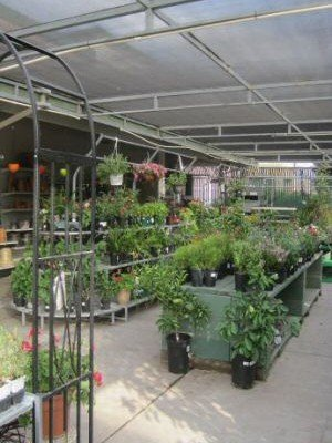 Garden Center at Ace Hardware in Brentwood