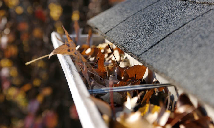 Gutter Cleaning provided by A & D Property Maintenance in Dover NJ
