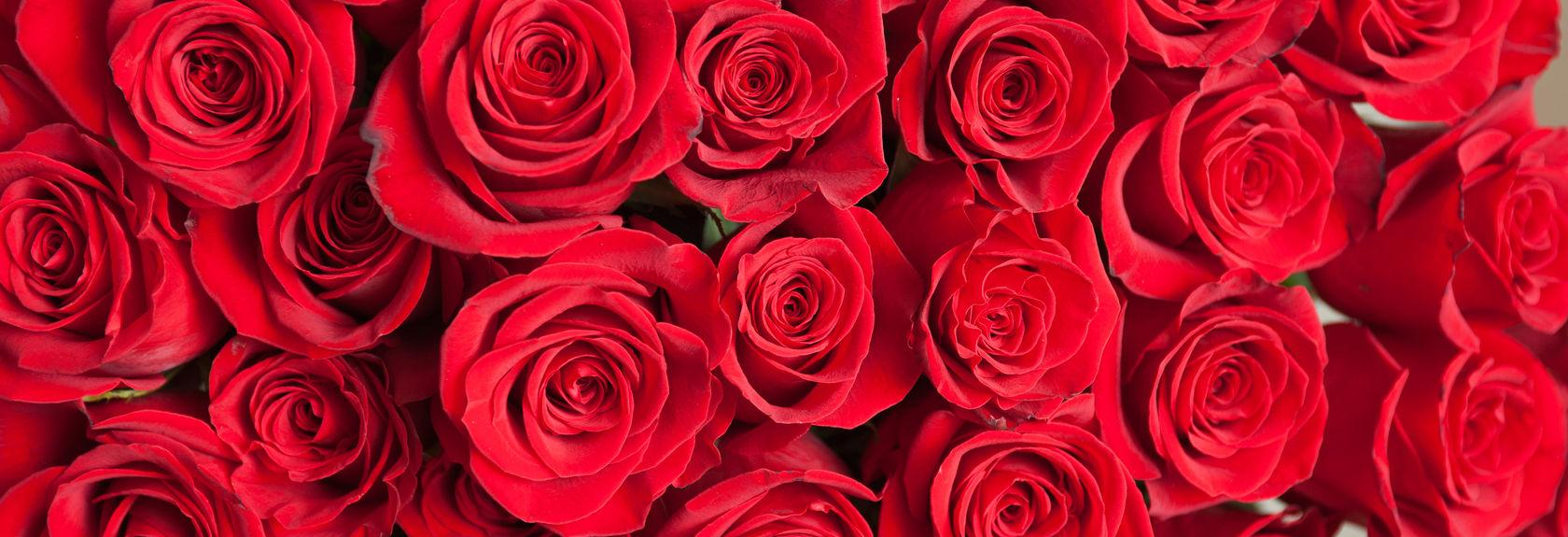 A & S Whitestone Florist & Nursery banner Whitestone, NY