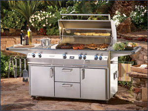 Twins Eagle Free Standing Grills