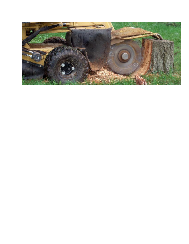 Able Tree Solutions in Randolph NJ stump grinding
