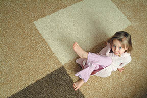 Ace Carpet Cleaning coupn Rochester NY