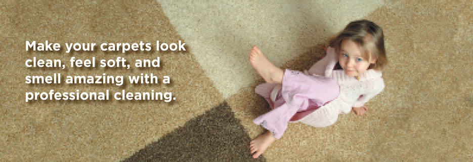 Ace Carpet Cleaning deals Rochester NY