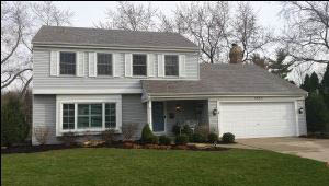 Cleaning services for roof shingles near Naperville, Elgin