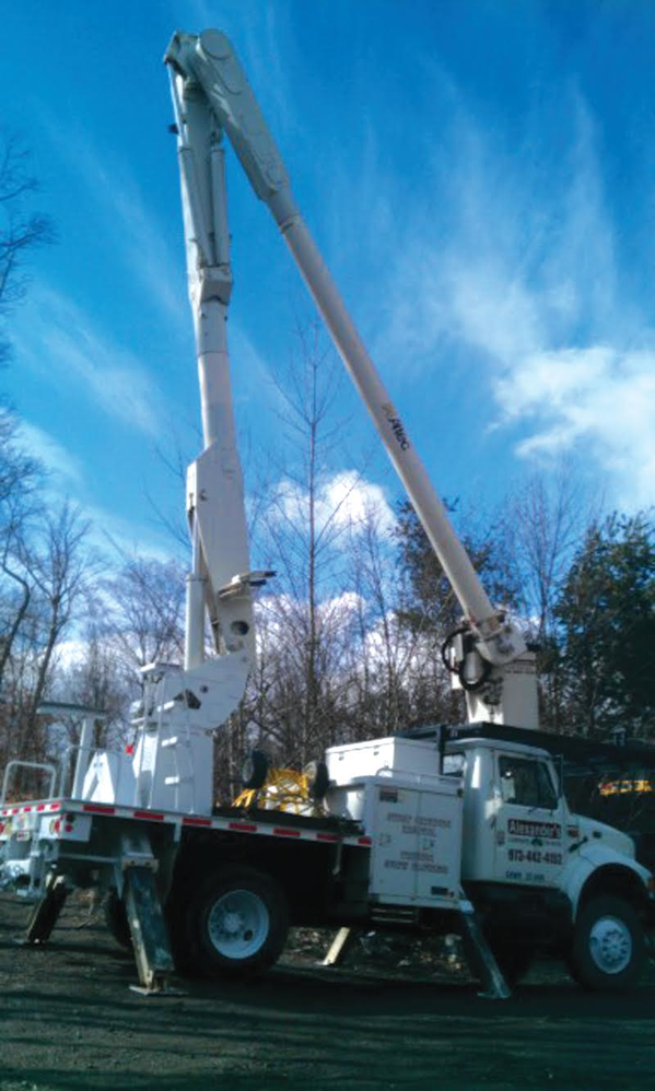 Tree Removal by Alexander's Landscaping & Tree Service in Mine Hill NJ