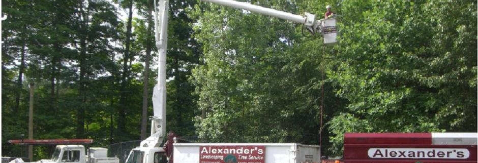 Alexander's Landscaping & Tree Service Mine Hill NJ