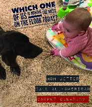 Pet and child-friendly carpet cleaning