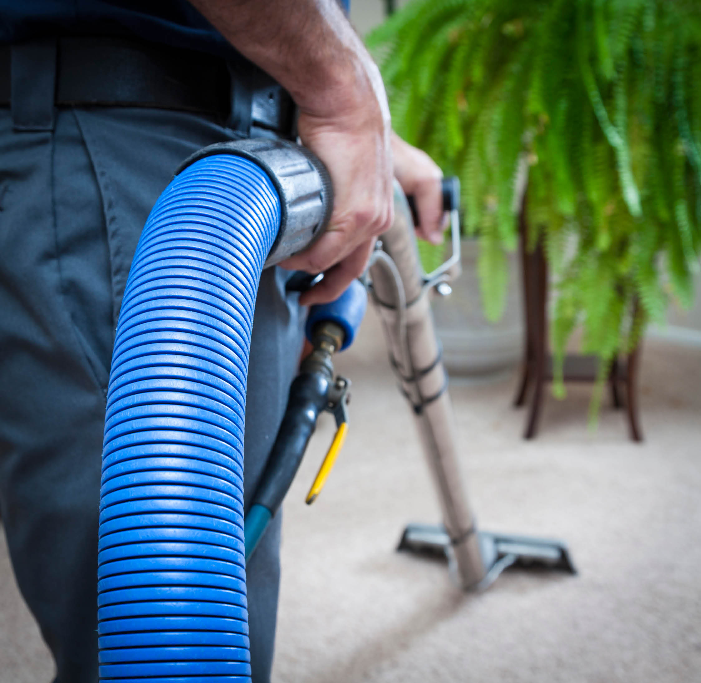 Alpine performs carpet cleaning, as well as upholstery and air-duct cleaning