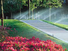 photo of flower beds and lawn sprinklers installed by American Lawn Sprinkler in Dryden, MI