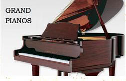 American Music World got its start, 35 years ago, selling, servicing and reconditioning new and used pianos.