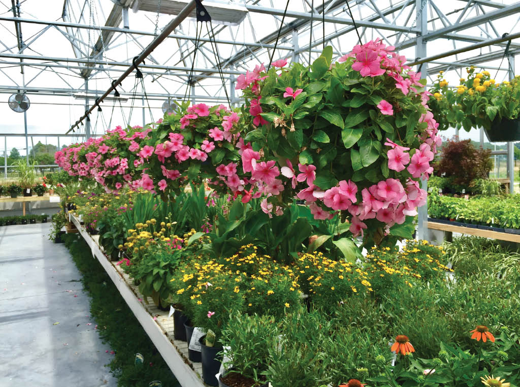 Buy Gardening Supplies And Tools At Our Gardening Center