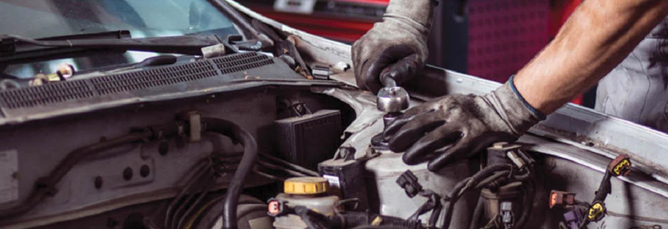 Auto Pro main banner image - Renton, WA